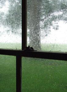 Sommarregn är något av det bästa (och sämsta ibland) jag vet, klicka på bilden för att läsa vad jag skriver på Kulturkollo.