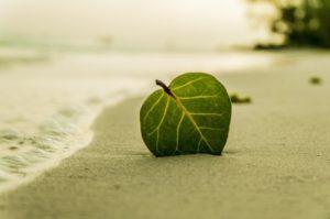 Kulturkollos veckoutmaning – tre lättsamma saker