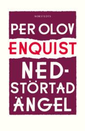 Nedstörtad ängel av Per Olov Enquist